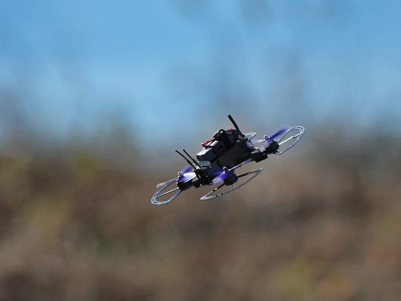Máy bay côn trùng và tiềm năng ứng dụng vào quân sự