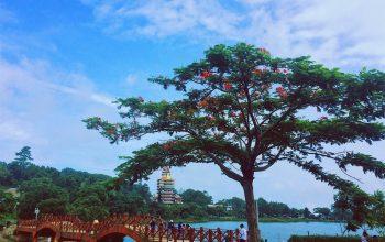 Tham khảo lịch trình du lịch Hà Tiên 2 ngày 1 đêm